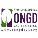 Coordinadora Castilla y León