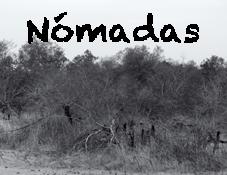 Nomadas