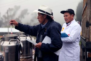 negocios-inclusivos-ecuador