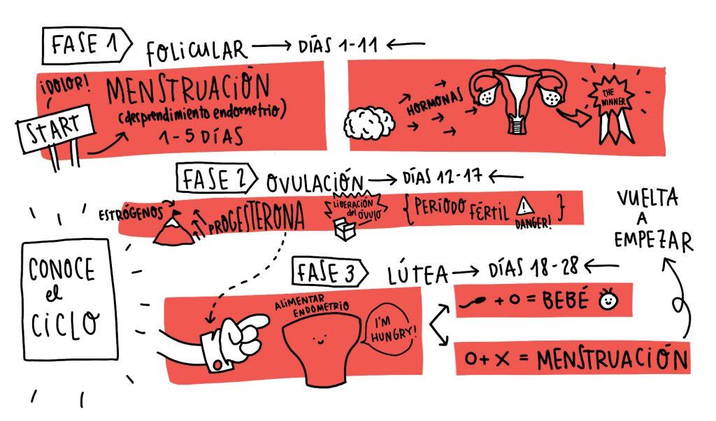 Diagrama sobre la menstruación incluido en el fanzine presentado por Farmamundi